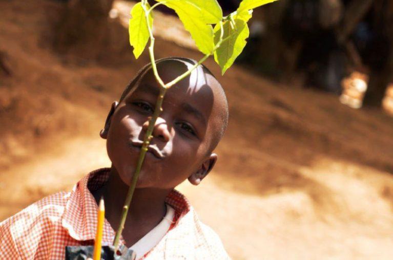 ECO Logistics - Tree Planting Project